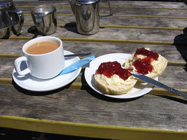Cornishcreamtea_1276195826.jpg